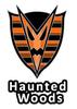 Altador Cup Haunted Woods Team Logo Pin