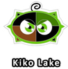 Altador Cup Kiko Lake Team Logo Pin