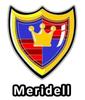 Altador Cup Meridell Team Logo Pin