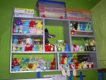 Well, this is my collection...I have lots of McDonalds Plushies, because you cant find new Neopets stuff in Chile, so I buy all my plushies from used plushies stores. You can see Action figures, TCGs, and Plushies